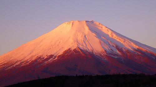 写真2.紅富士