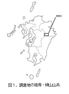 No115 図1