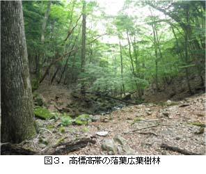 No115 図3