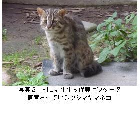 no129-写真2