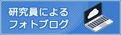 研究員によるフォトブログ